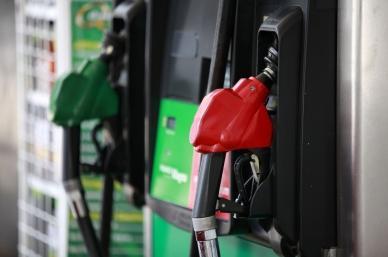 Precios de gasolinas bajarán por primera vez en enero gracias a reforma, destaca Hacienda