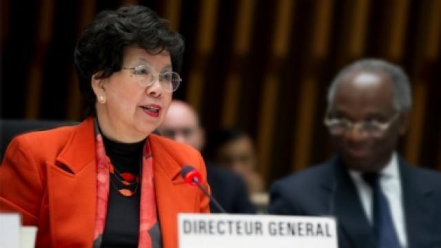 Organización Mundial de la Salud declara emergencia por Zika