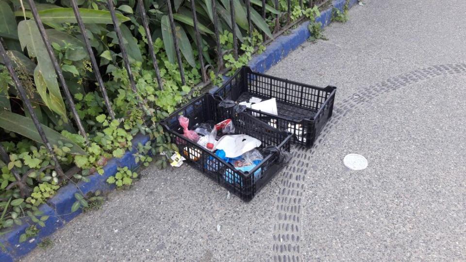 Piden vecinos de la Zona Romántica  orden con la recolección de basura