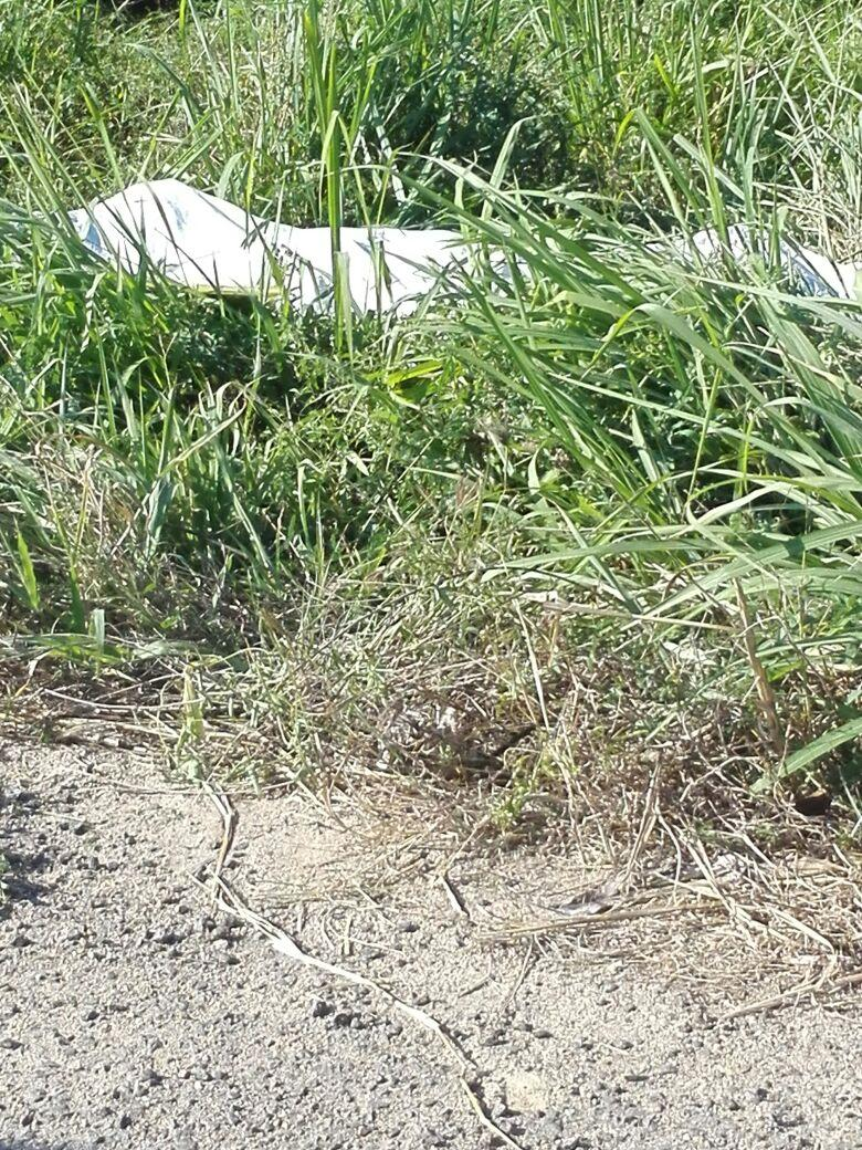 En volcadura se mató  vecino de Campo Acosta