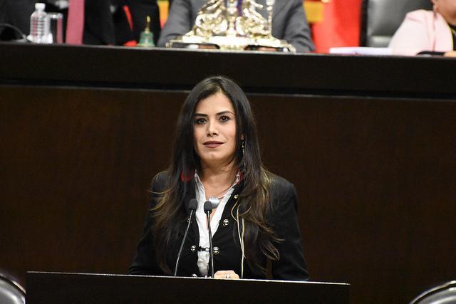 El castigo a la corrupción no debe tener fecha de caducidad: Verónica Delgadillo.