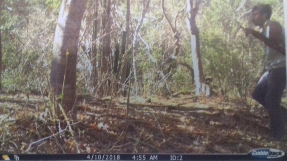 Avanza los trabajos de servicios ambientales  en Bahía, pero aún hay cazadores fortuitos
