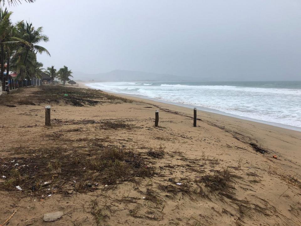 Bud se degrada a tormenta tropical;  provocará lluvias en todo el país