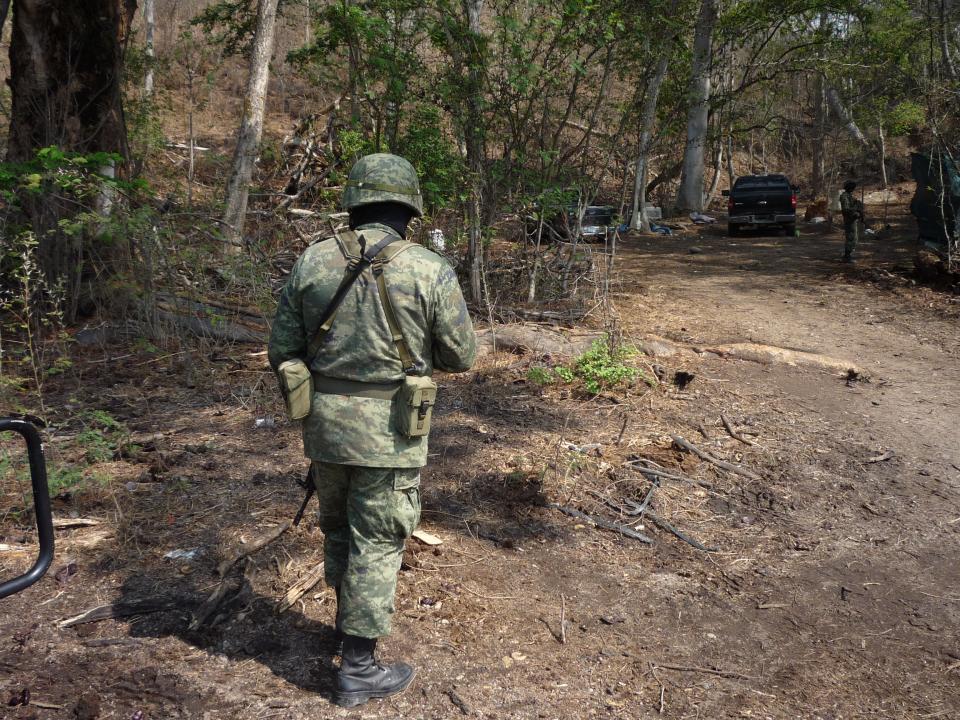 Militares aseguran marihuana en Tomatlán