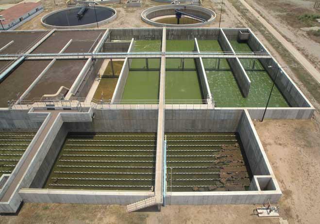 Cumple Bahía con compromiso ambiental como municipio