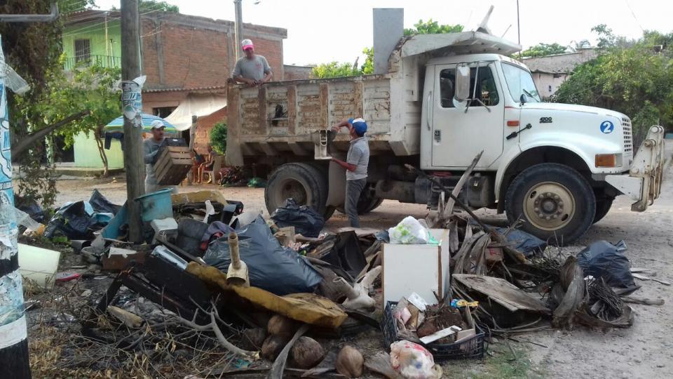 Preocupante el incremento de casos de  dengue en la región de Puerto Vallarta y Bahía de Banderas