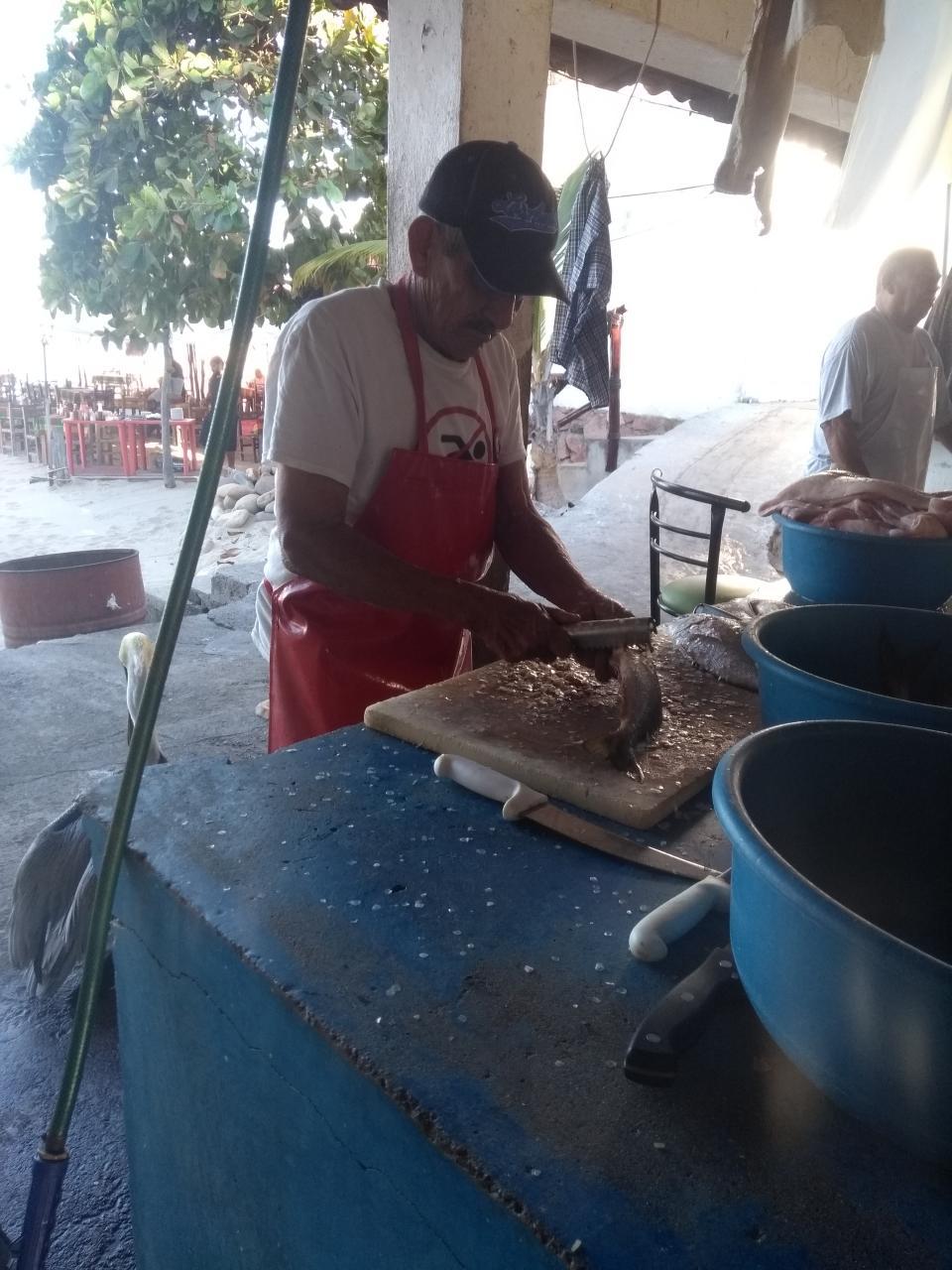 Pescadores de la Cooperativa La Rosita 40 años trabajando en el malecón de Puerto Vallarta