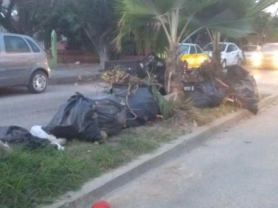 Convierten el camellón de la González Gallo en basurero