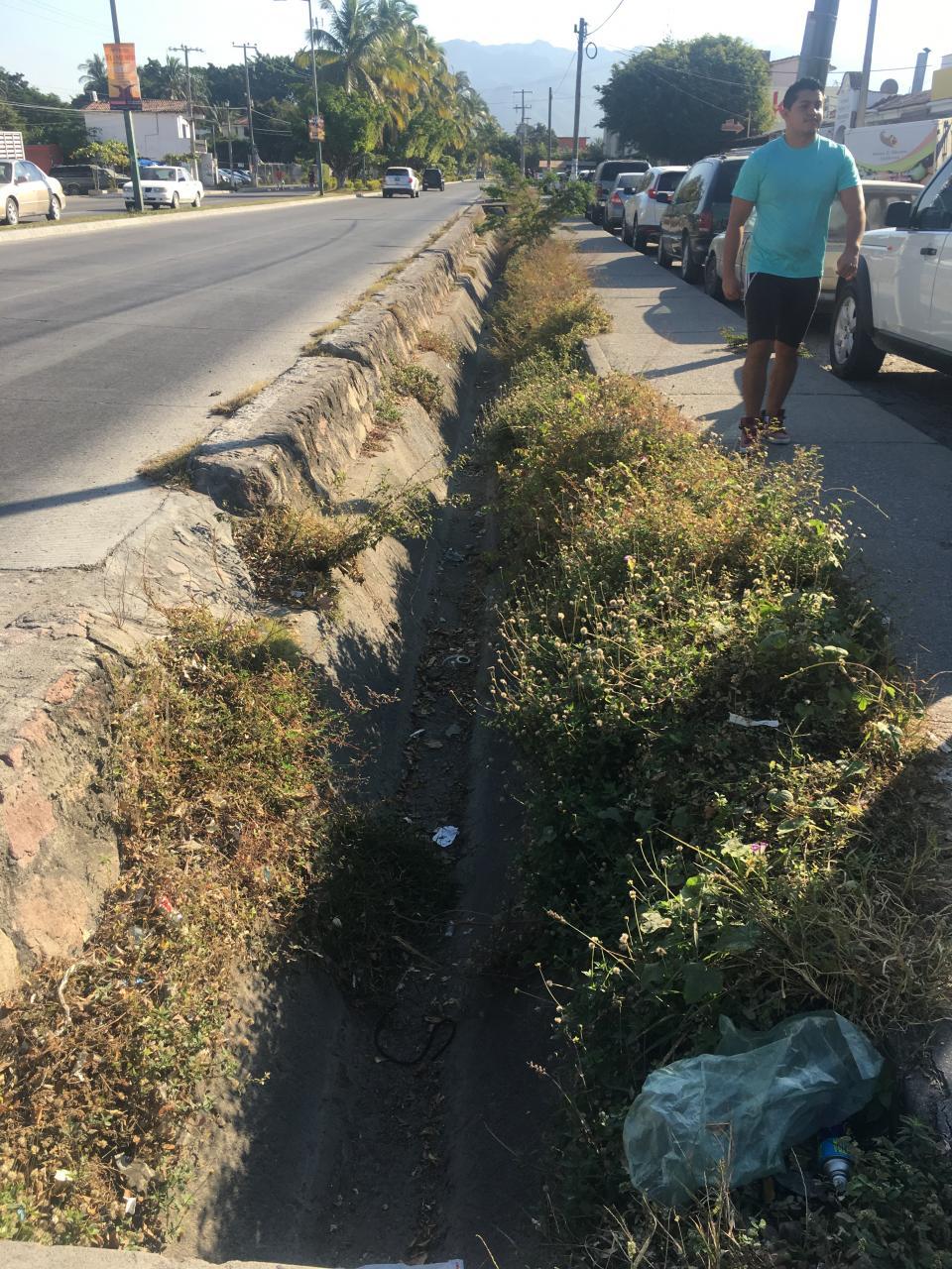 Criminal fuga de agua  en Palmar de Aramara