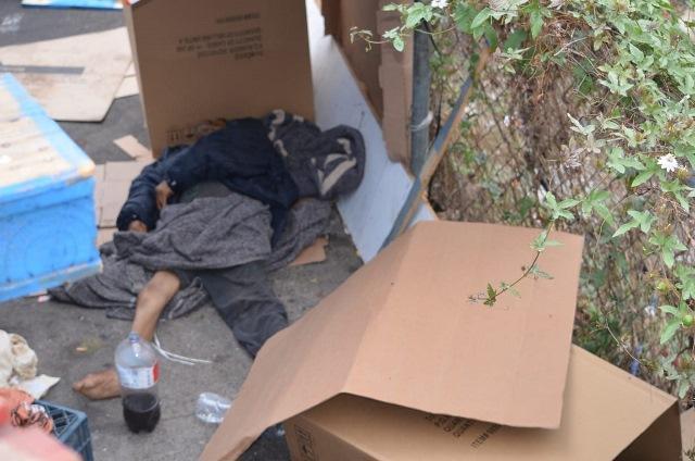 """""""El Tabaldillo"""" fue encontrado muerto"""