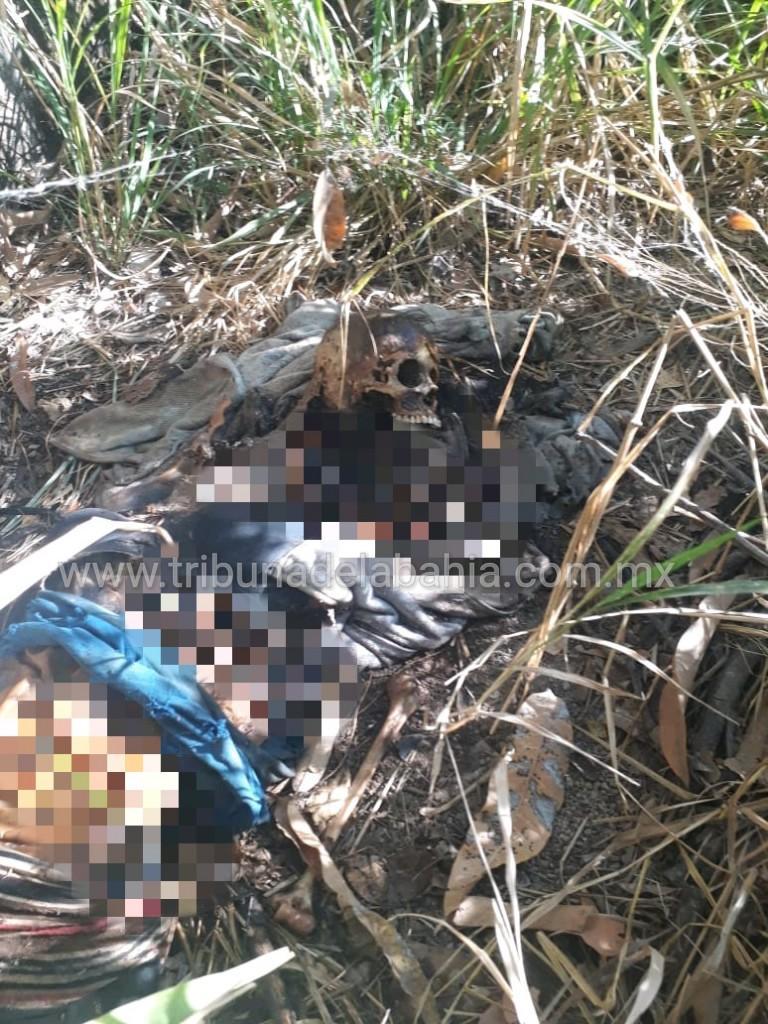 Localizan restos humanos en un lote baldío de Puerto Vallarta