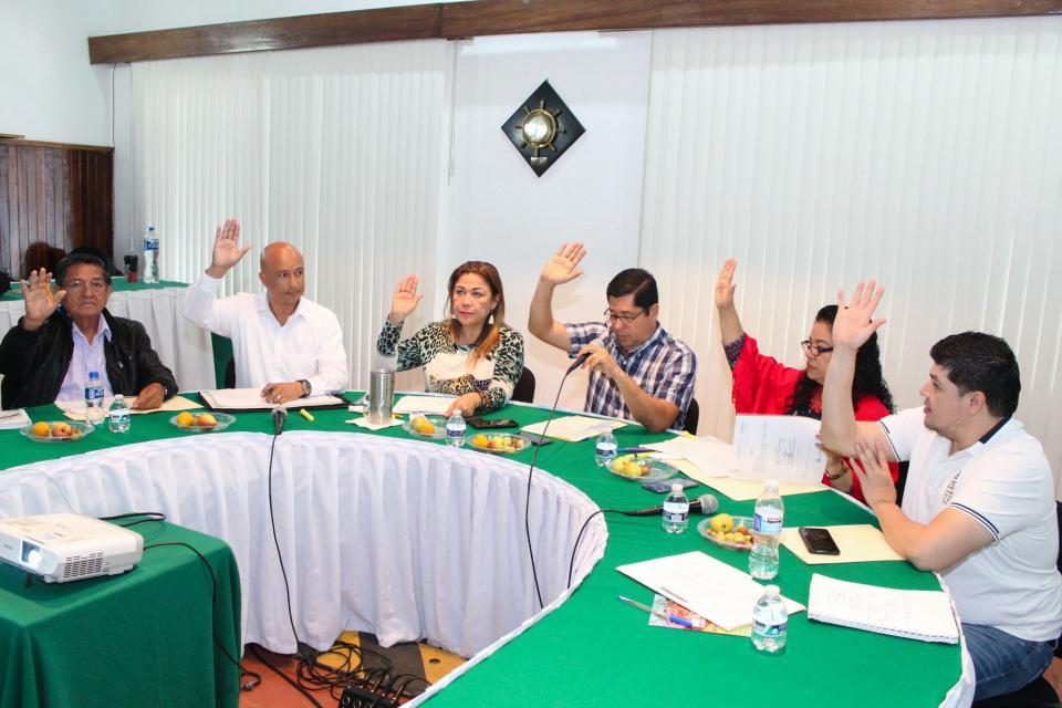 Aprueban iniciativa en sesión de la comisión de Participación Ciudadana    Adecuarán reglamento para conformar cabildo infantil y juvenil