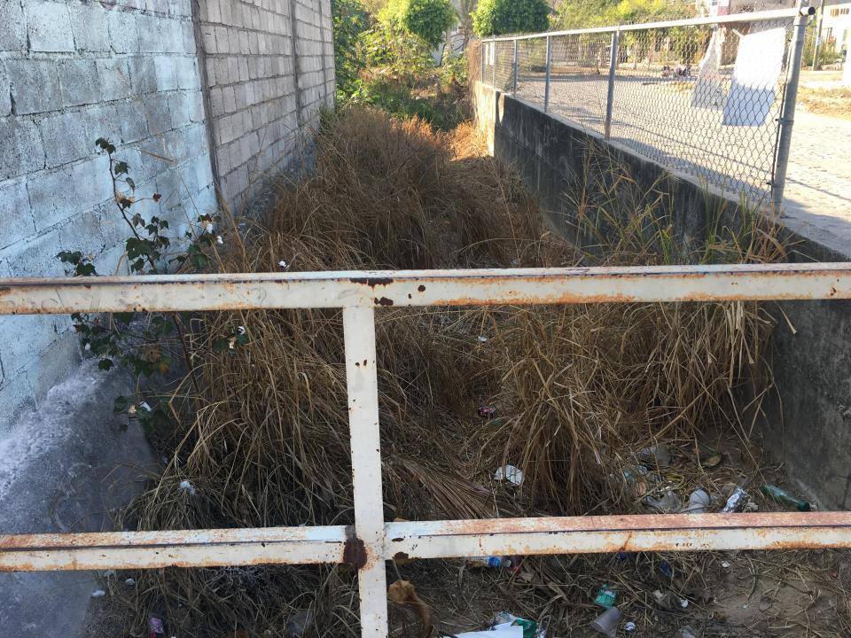 Vecinos solicitan la limpieza decanal en Palmares Universidad