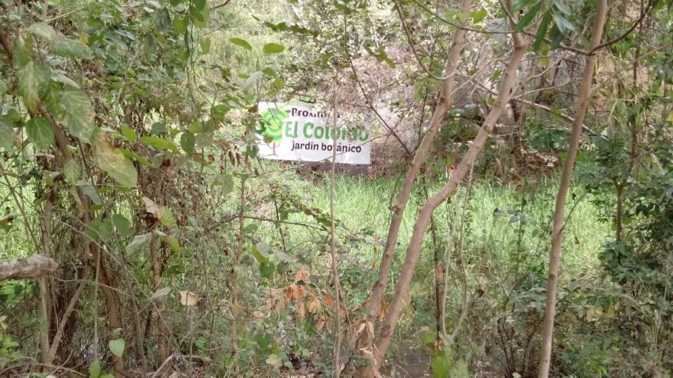 Se buscará abrir un jardínbotánico en la sierra