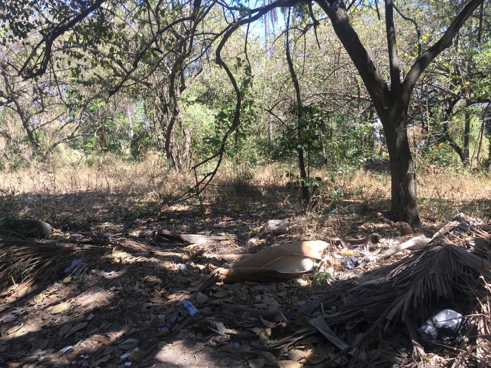 Terrenos baldíos peligrosos en la Bobadilla