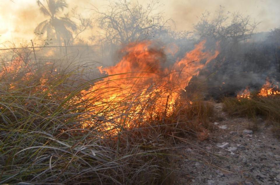Incendio en el Esterono causó daños graves