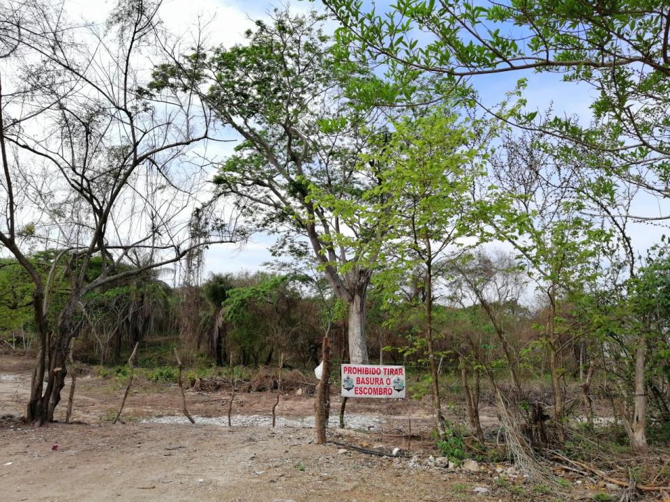 Tiraderos de basura clandestinosen la periferia de El Pitillal
