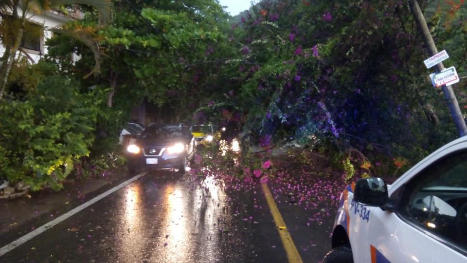Tormenta provocó caída de árbol y cierre de carretera 200