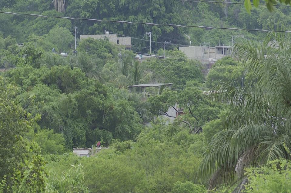 Irregulares 62 colonias en PuertoVallarta; buscan darles certidumbre
