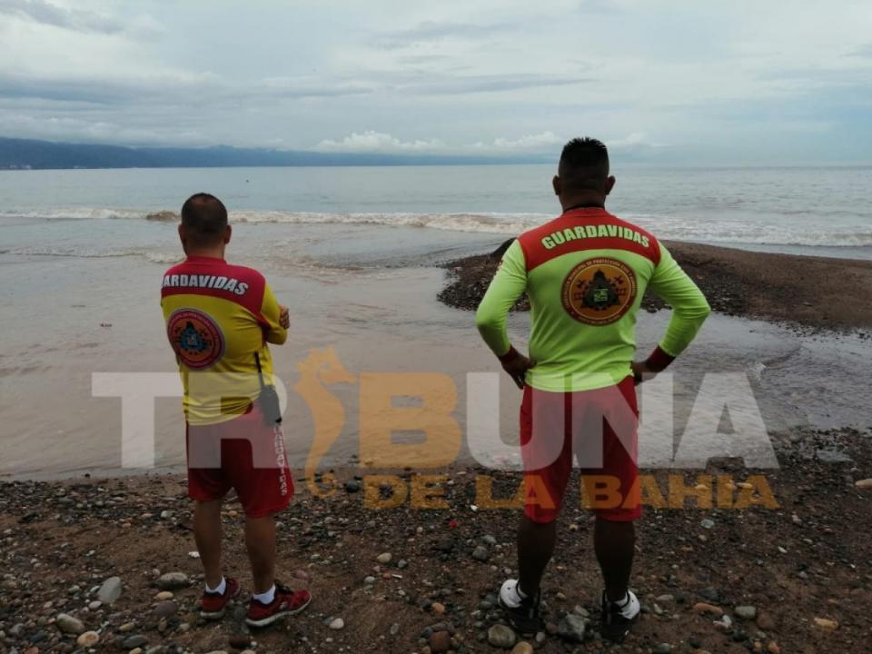 Reportan Avistamiento de Cocodrilo de mas de 4 metros en Playa Las Glorias