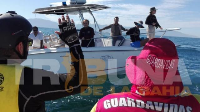 Liberan ballena de chinchorro en desembocadura del río Ameca