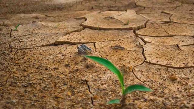 Lanzan plan de acción para acelerar adaptación climática