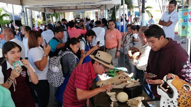 Feria ambiental en la plaza de Bucerías