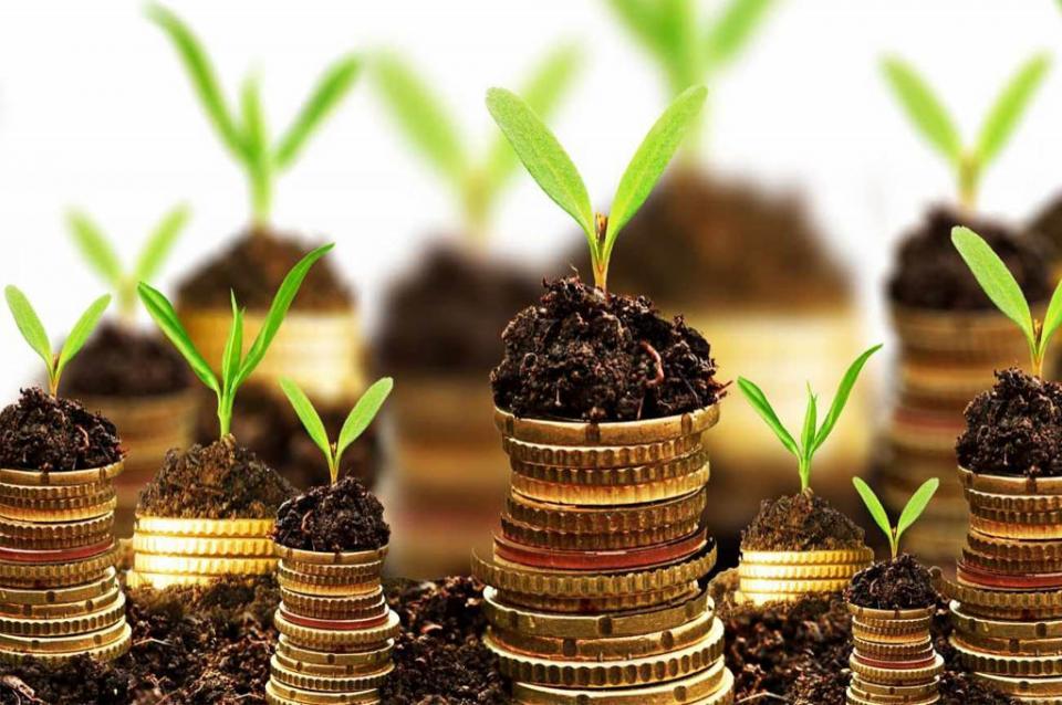 Provoca el cambio climático inversiones verdes