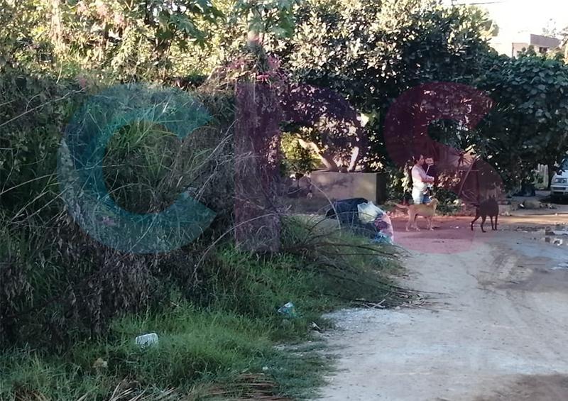 Solicitan apoyo de autoridades para el saneamiento de áreas verdes