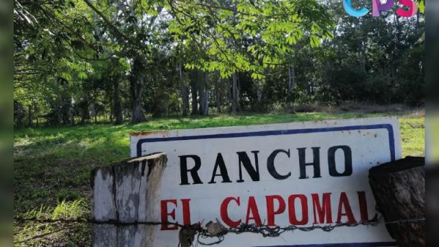 El Capomal, paradisíaco bosque cercano a Vallarta que buscan preservar