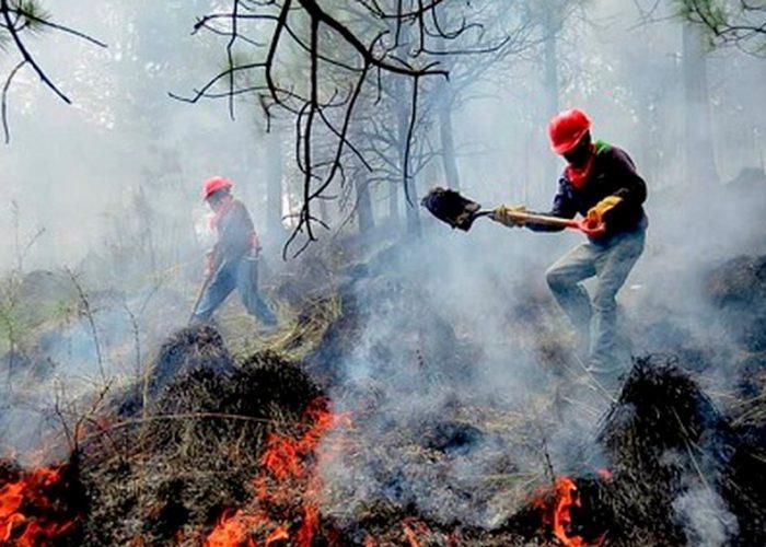 Reportan en México 24 incendios forestales: 12 aún activos.