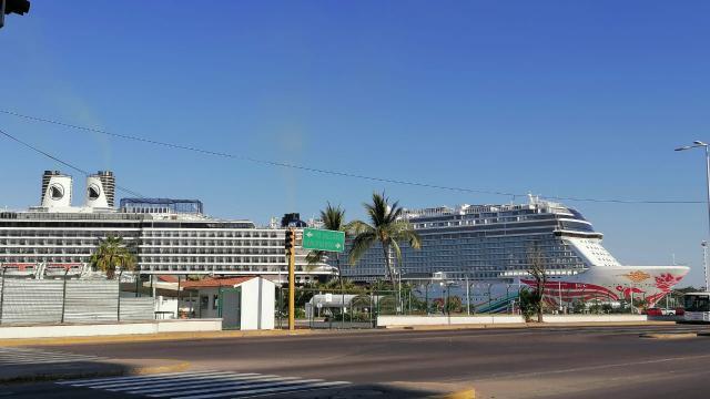 API Puerto Vallarta atiende 10 cruceros humanitarios