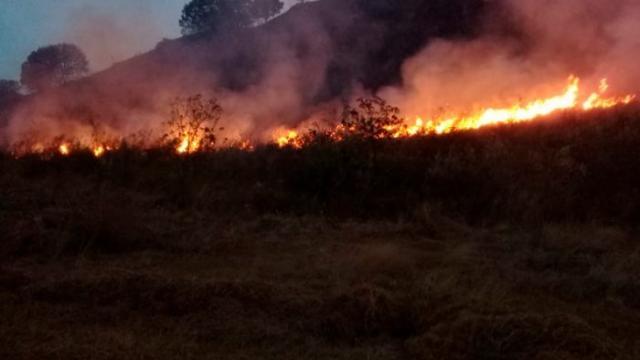 Registran 63 incendios forestales activos en México