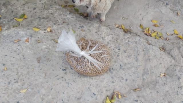 Realizan acopio de alimentos también para mascotas