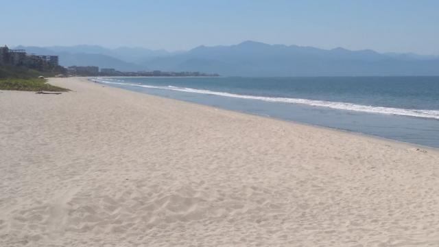 Vigilarán que playas estén sin gente, hoteles podrán tener actividades para su mantenimiento