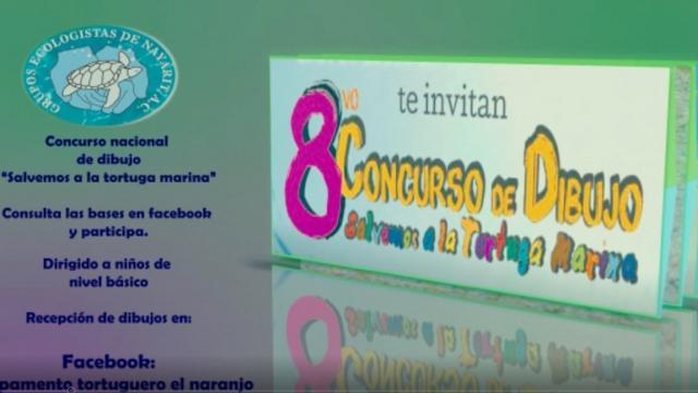 Concurso de dibujo Tortuga Marina
