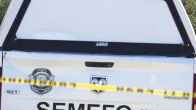Localizan en Jalisco 25 cuerpos en fosa clandestina