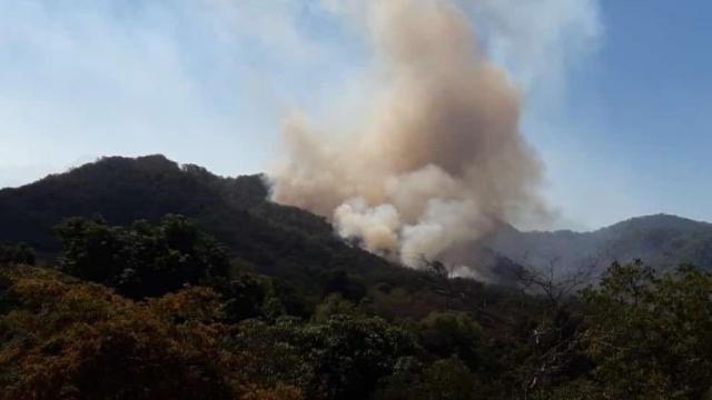 Incendio en La Estancia de Landeros