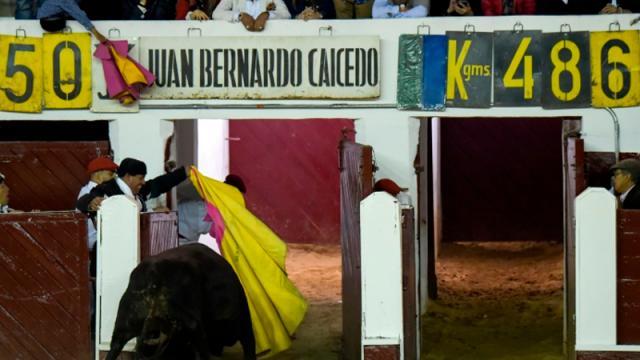 Bogotá prohíbe maltrato o muerte del toro en corridas