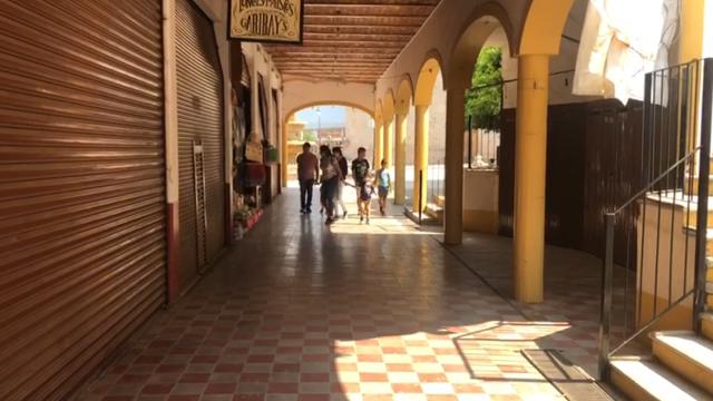 Municipio de Talpa