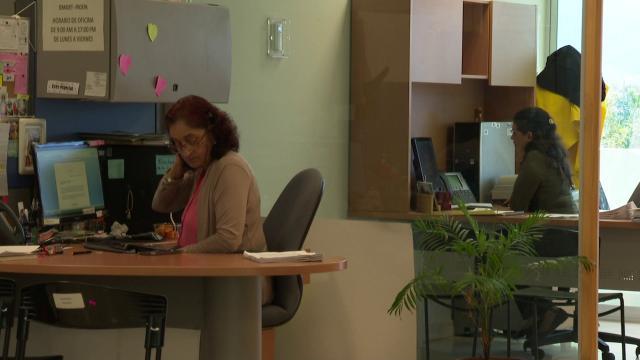 Mujeres laborando en una oficina