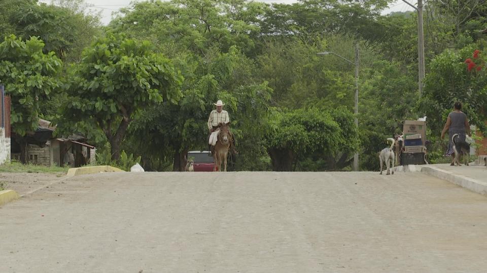Hombre paseando a caballo en una calle principal de Tebelchía