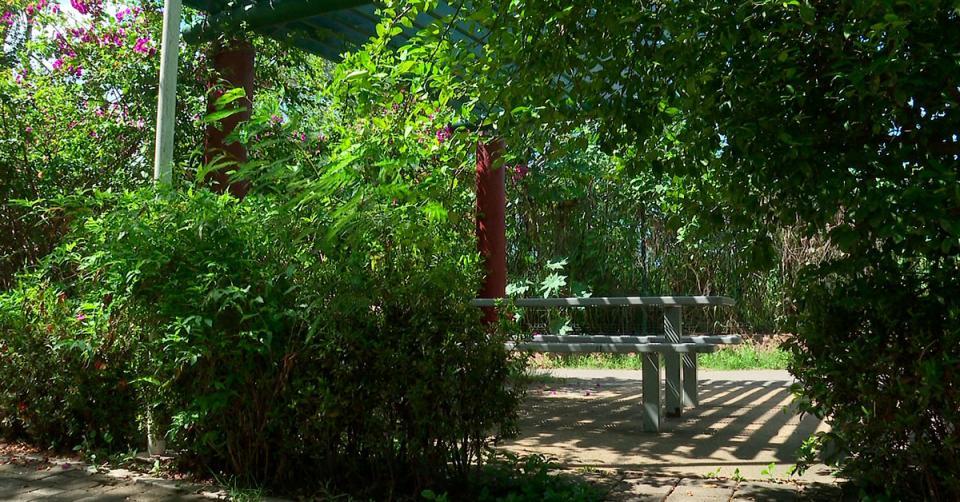 Parque lineal Puerto Vallarta