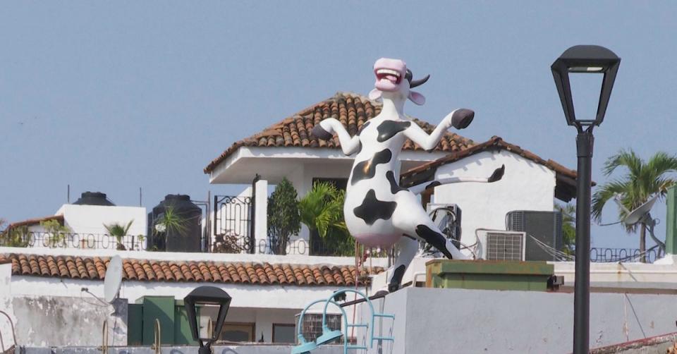 Bares en Puerto Vallarta
