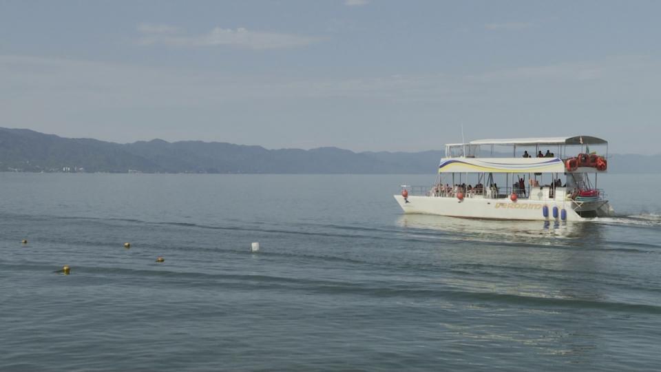 Embarcaciones en Puerto Vallarta