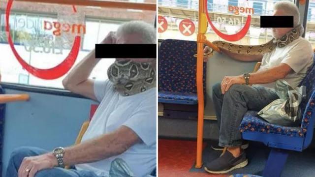 Usuario usando una serpiente como mascarilla en Mánchester, Inglaterra