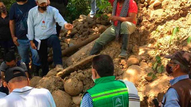 restos fósiles de mastodonte