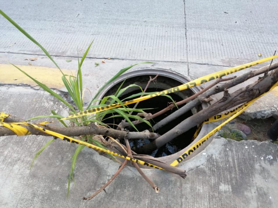 Alcantarilla cubierta con ramas