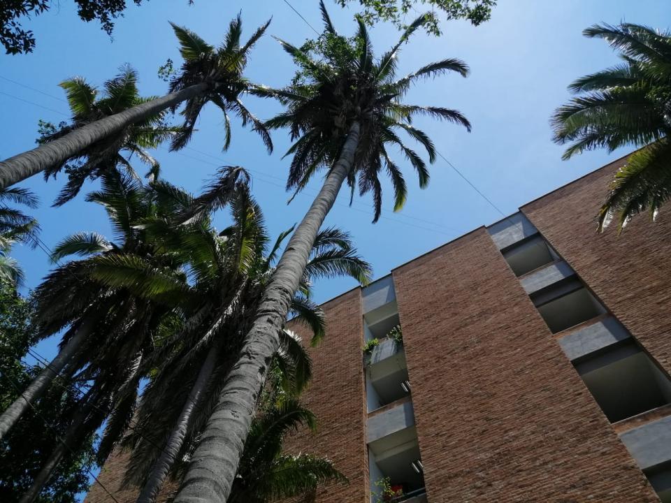 Edificio de la UMA Puerto Vallarta