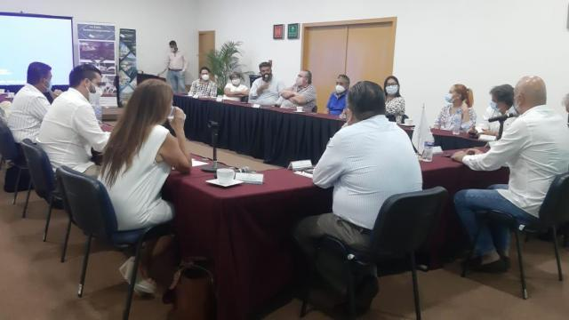 Consejo Consultivo Puerto Vallarta